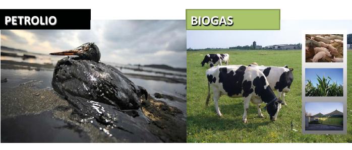 petrolio-biogas